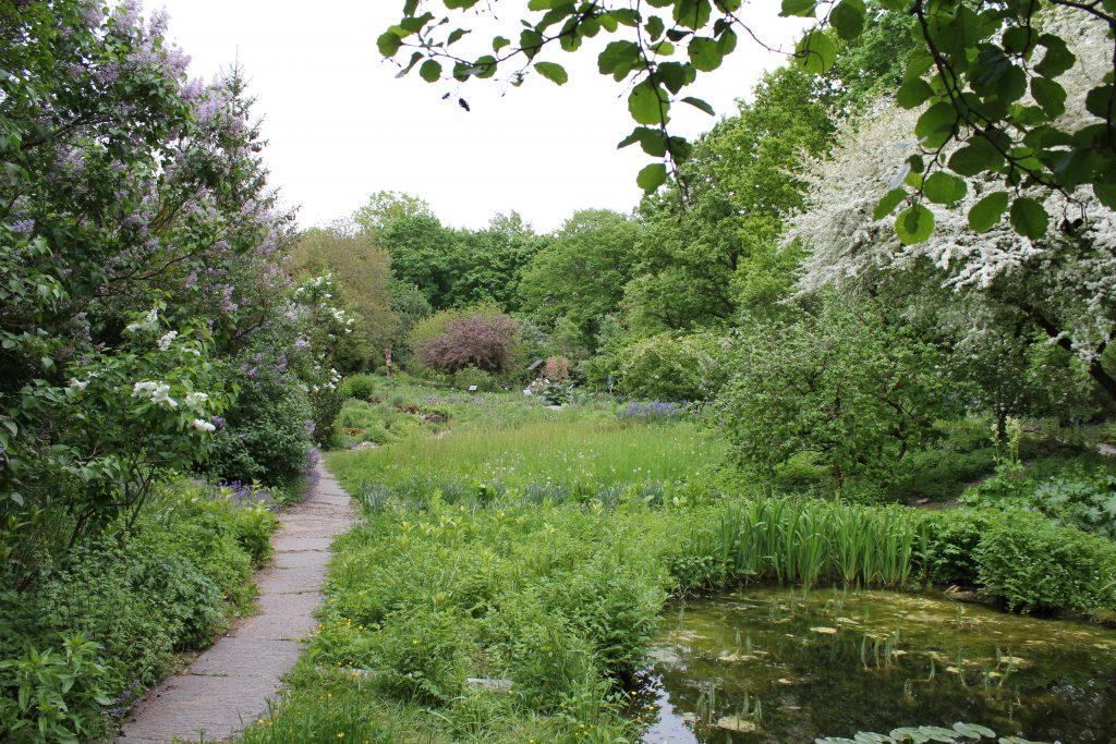 Blick auf den Aromagarten