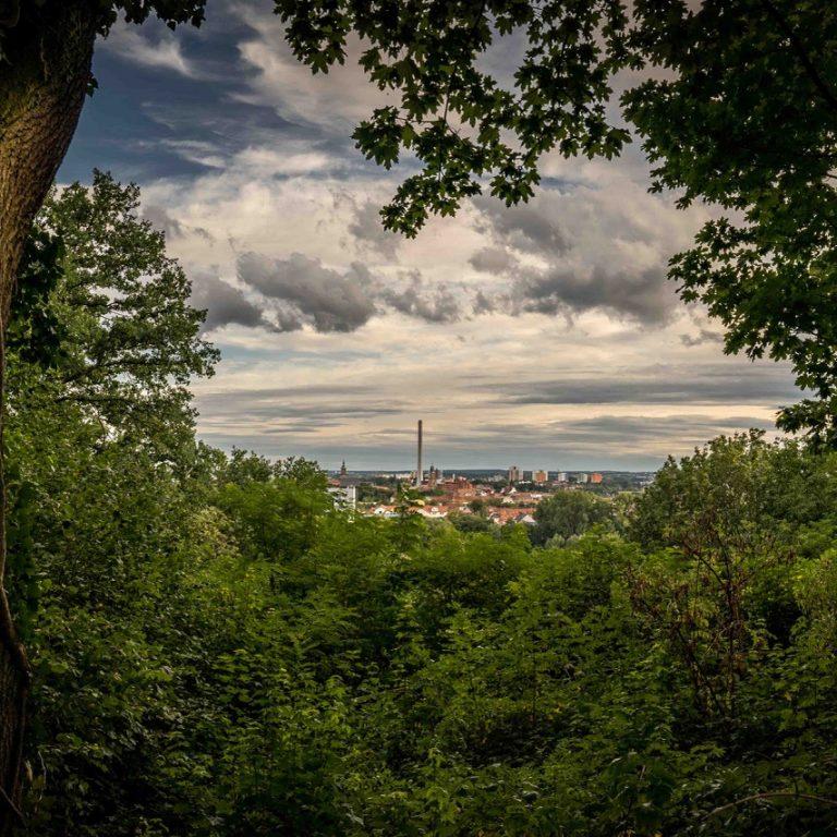 """""""Ein Juli-Abend im Burgberggarten. Gefühlt weit oben über der Stadt aber ihr gleichzeitig doch so nah. Während der Bergkirchweih vermischt sich der Duft von Frühlingsblüten mit dem von gebrannten Mandeln. Ein Platz mit ganz viel Lebensqualität. Ich habe das Bild gewählt, wegen des vielen Grüns und der schon fast Urwald-artige Atmosphäre."""""""
